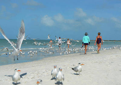Digital Art - Birds And Beach 2 by Susan Stone