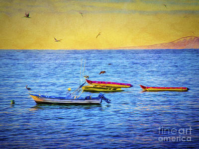 Photograph - Birds And Boats  ... by Chuck Caramella