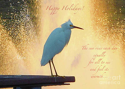 Photograph - Birds And Fun At Butler Park Austin - Birds 3 Detail Macro Poster - Happy Holidays by Felipe Adan Lerma