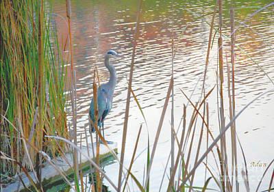 Butler Park Austin Texas Photograph - Birds And Fun At Butler Park Austin - Birds 4 by Felipe Adan Lerma