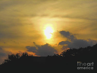 Photograph - Birds And Fun At Butler Park Austin - Silhouettes - Landscape In The Sky by Felipe Adan Lerma