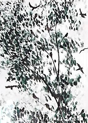 Birds At Sundown I Art Print by Caroline  Urbania Naeem