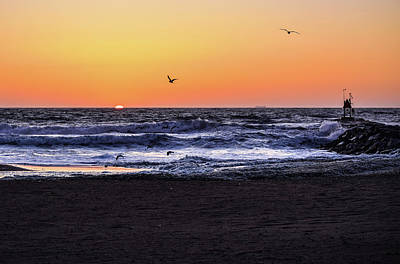 Photograph - Birds At Sunrise by Nicole Lewis