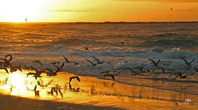 Art Print featuring the photograph Birds At Sunrise by Phil Mancuso