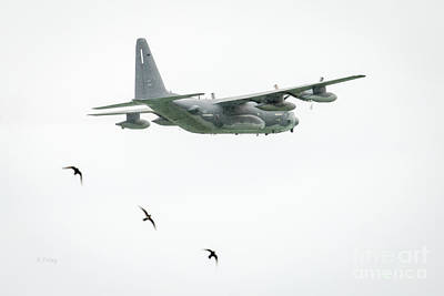 Photograph - Birds Doing Formation Flying While A C-130 Competes  by Rene Triay Photography