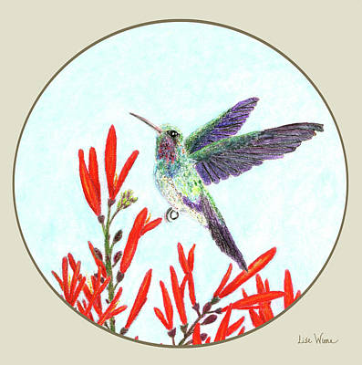 Painting - Birds Drawings And Paintings Button by Lise Winne