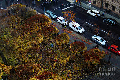 Photograph - Bird's Eye Of A Berlin Street by Ana Mireles