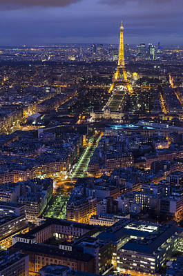 Bird's Eye On Paris 2 Art Print