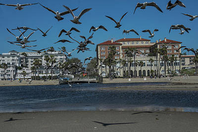 Birds Flight From The Right Of Passage Art Print by Kenneth James