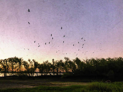 Mixed Media - Birds Flying Over Trees At Sunset by Helissa Grundemann