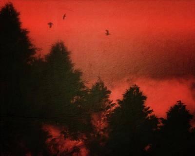 Birds In A Red Sky Art Print