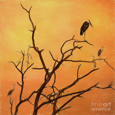 Digital Art - Birds In An African Sunset by Liz Leyden