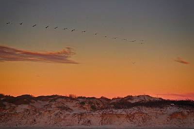 Photograph - Birds In Flight At Sunrise by Kristina Deane