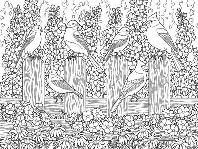 Delphinium Painting - Birds In Flower Garden Coloring Page by Crista Forest