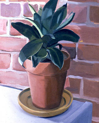 Painting - Bird's Nest Snake Plant 1977 by Nancy Griswold