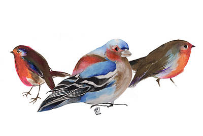 Finch Drawing - Birds Of A Feather by Nancy Moniz