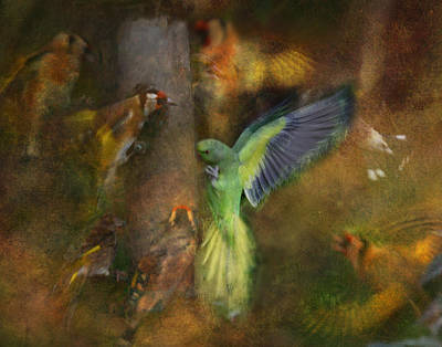 Parakeet Digital Art - Birds Of A Feather  by Valerie Baker
