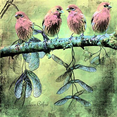 Digital Art - Birds Of Like Minded Feathers by Laura Botsford