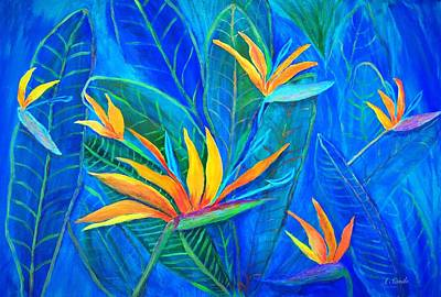 Strelitzia Painting - Birds Of Paradise by Anne Sands