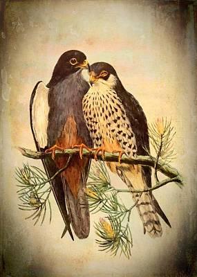 Mixed Media - Birds Of Prey 4 by Charmaine Zoe