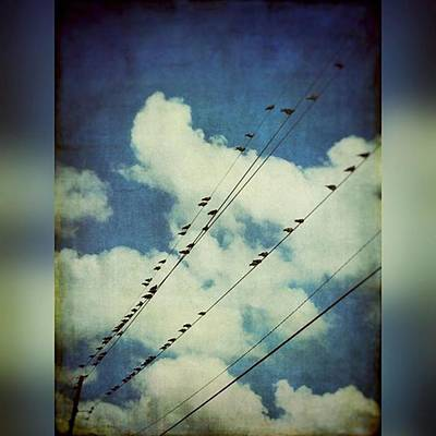 Texture Wall Art - Photograph - Birds On A Line #clouds #birdsonawire by Joan McCool