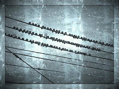 A Hand-thrown Digital Art - Birds On A Wire by Blue Doves