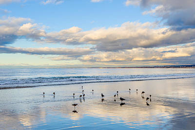 Photograph - Birds On The Beach by Derek Dean