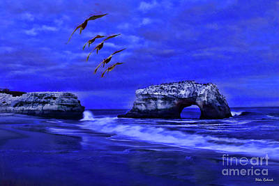 Photograph - Birds Over Natural Bridges by Blake Richards