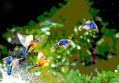 Wood Duck Mixed Media - Birds Playing by Charles Shoup