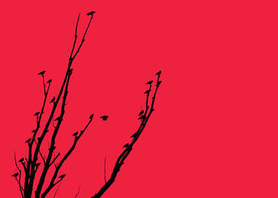 Photograph - Birds Silhouette Red by Jennie Marie Schell
