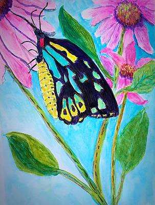 Painting - Birdwing Butterfly by Anne Sands