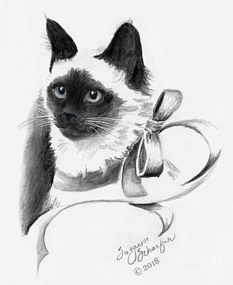 Drawing - Birman Cat Drawing by Suzanne Schaefer