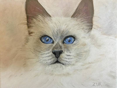 Painting - Birman Cat by Karen Zuk Rosenblatt