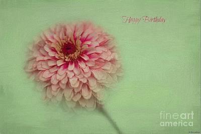Zinnia Elegans Photograph - Birthday Card by Eva Lechner