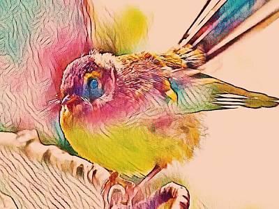 Digital Art - Birthday Fantail by Nancy Pauling