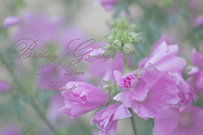 Photograph - Birthday Greetings To A Dear Friend by Sandra Foster