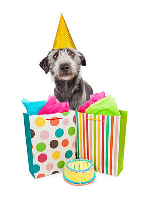 Birthday Party Dog Presents And Cake Art Print by Susan Schmitz