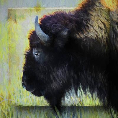 Bison Digital Art - Bison #4 by John Strong