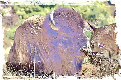 Bison Digital Art - Bison And Friend by KJ DePace