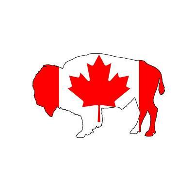 Bison Digital Art - Bison Canada by Steph J Marten