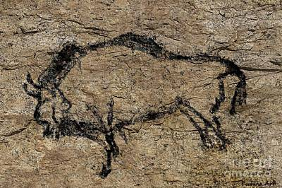 Ancient Digital Art - Bison From Niaux Cave by Dragica Micki Fortuna