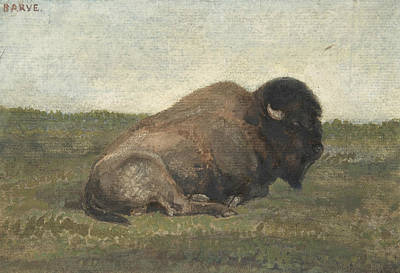 Bison Drawing - Bison Lying Down by Treasury Classics Art