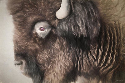 Photograph - Bison Sketch by Anna Louise