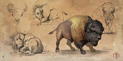 Digital Art - Bison Study Sheet by Steve Goad