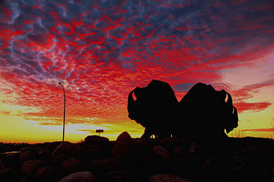 Photograph - Bison Sunset by Larry Trupp
