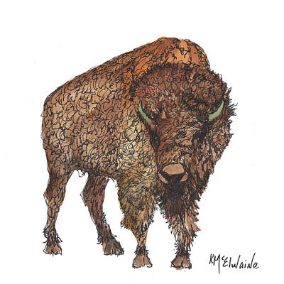 Painting - Winter Bison Watercolor Of United States Of America 2016 Mammal Fine Art Poster Watercolor by Kathleen McElwaine