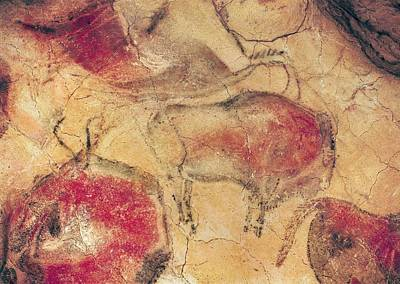 Antiquated Painting - Bisons From The Caves At Altamira by Prehistoric