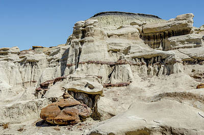 Photograph - Bisti Badlands - Animal Castle by Debra Martz