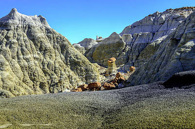 Photograph - Bisti Badlands - Another Dead End by Debra Martz