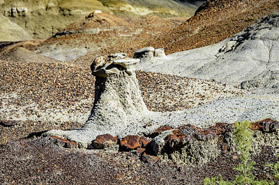 Photograph - Bisti Badlands - Between The Washes by Debra Martz